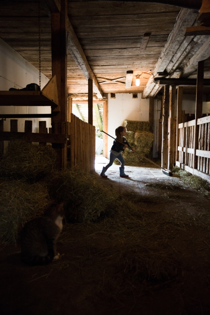Ombre et lumière à la ferme